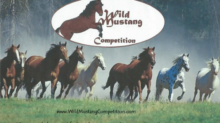 SFHM -040 Wild Mustang Competition