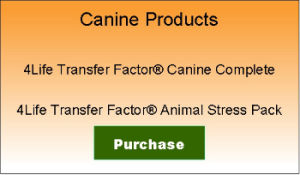 Canine Transfer Factor