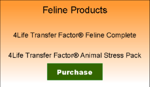 Feline Transfer2 Factor sign350