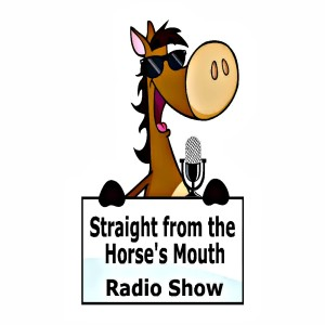 Promote Your Horse Business! Straight From the Horse's Mouth radio Show logo cartoon horse with microphone
