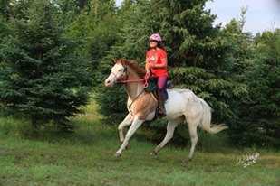 For the Love of Endurance Riding Ashley riding Splash in an endurance ride