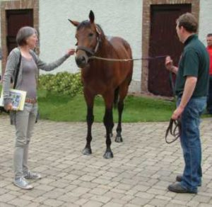 Lissa Oliver with horse SeaTheStars July2010 Passionate About Horse Racing and Writing