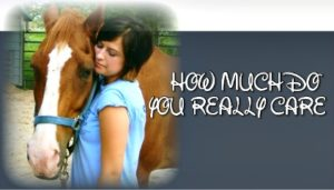 phot oof Girl hugging horse How much do you really care